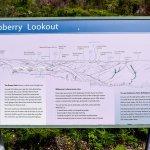 Raspberry Lookout