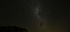 nimbin stars
